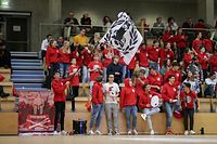 Spartinaikos, Fans Sparta, Fanclub, Zuschauer, Tribuene, Fahne 