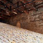 Lituânia vence Leão de Ouro na Bienal de Arte de Veneza