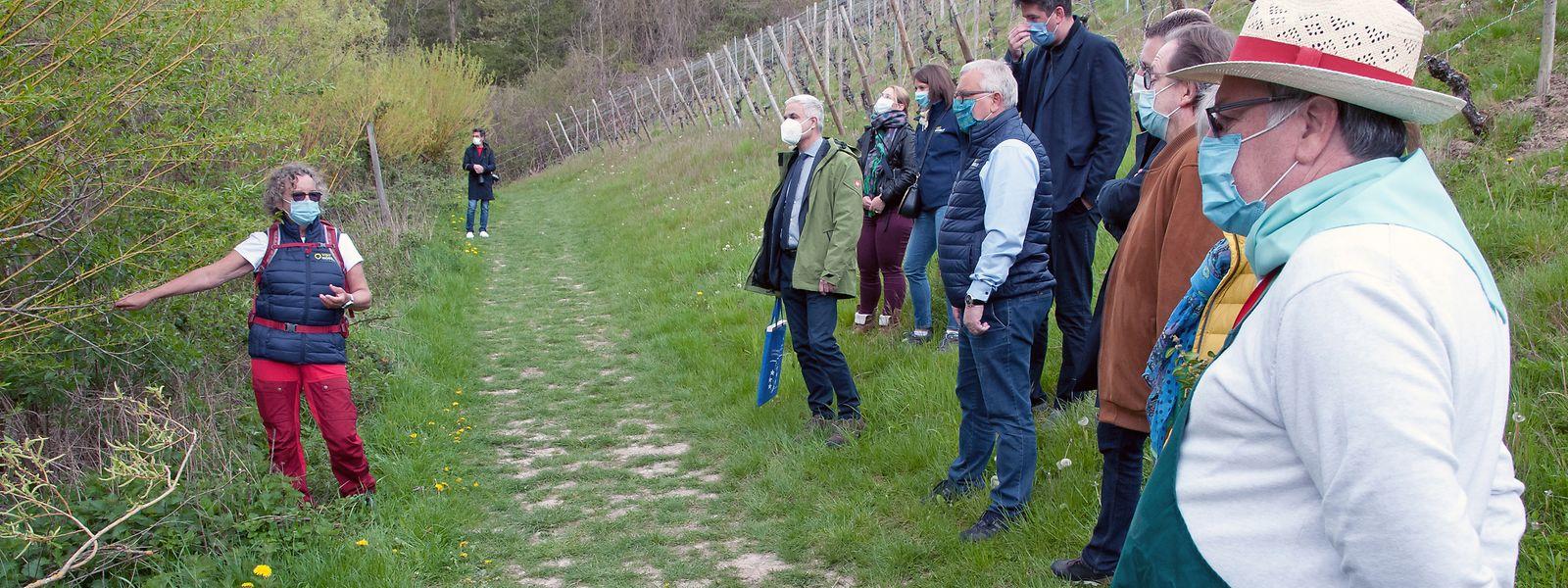 Bei der Einweihung des Leuchtpunktes erklärte Jutta Kanstein (Bild rechts), warum die Trockenmauern ein wertvoller Lebensraum sind.