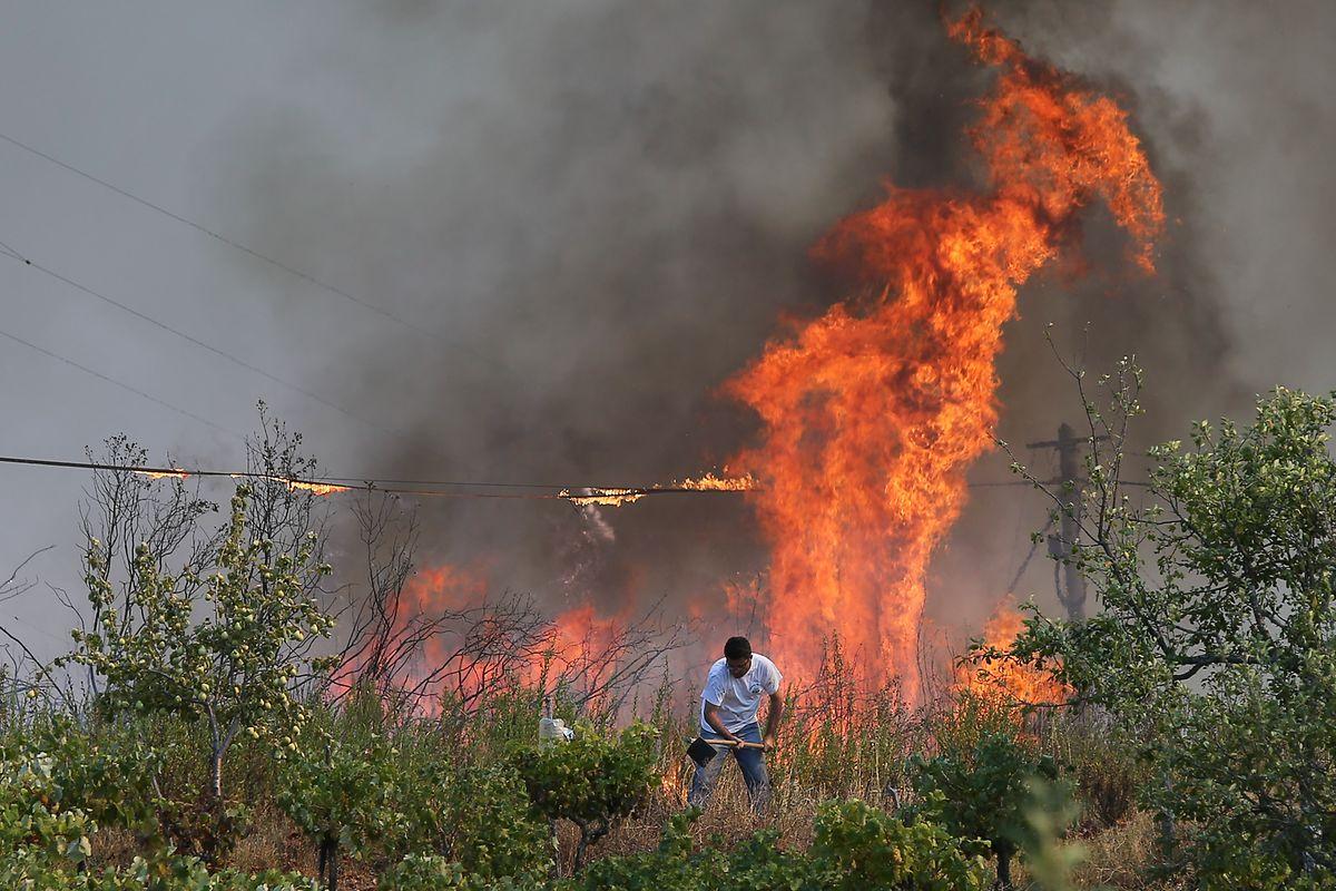 Um popular ajuda no combate ao incêndio perto aldeia de Cabeça Gorda, em Abrantes, 10 de agosto de 2017. MIGUEL A. LOPES/LUSA