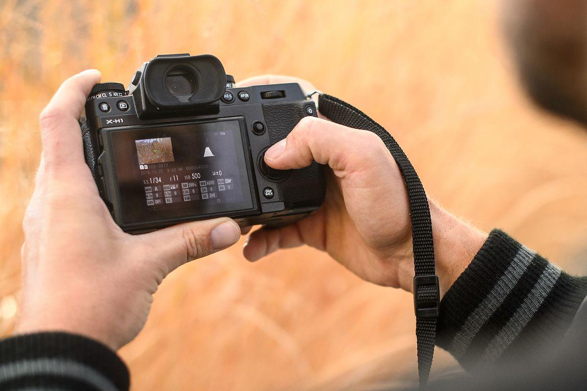 Bildkontrolle auch schon vor dem Abdrücken:Systemkameras zeigen bereits beim Blick in den elektronischen Sucher oder auf das Display, wie die Aufnahme später aussehen wird.
