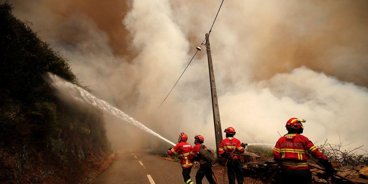 Die Waldbrände in Portugal hatten am Wochenende bereits über 60 Todesopfer gefordert.
