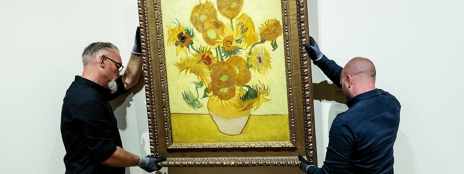 """Nach der Restaurierung war klar: Vincent van Gogh hatte seine """"Sonnenblumen"""" in viel leuchtenderen Farben gemalt."""