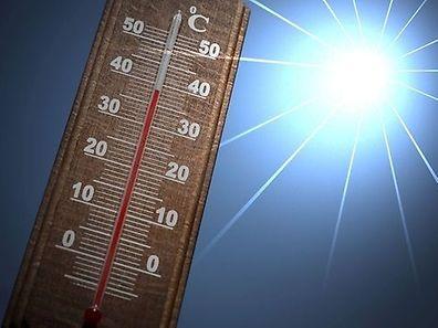O Plano Canícula 2017 preocupa-se com a população idosa em dias de calor extremo.