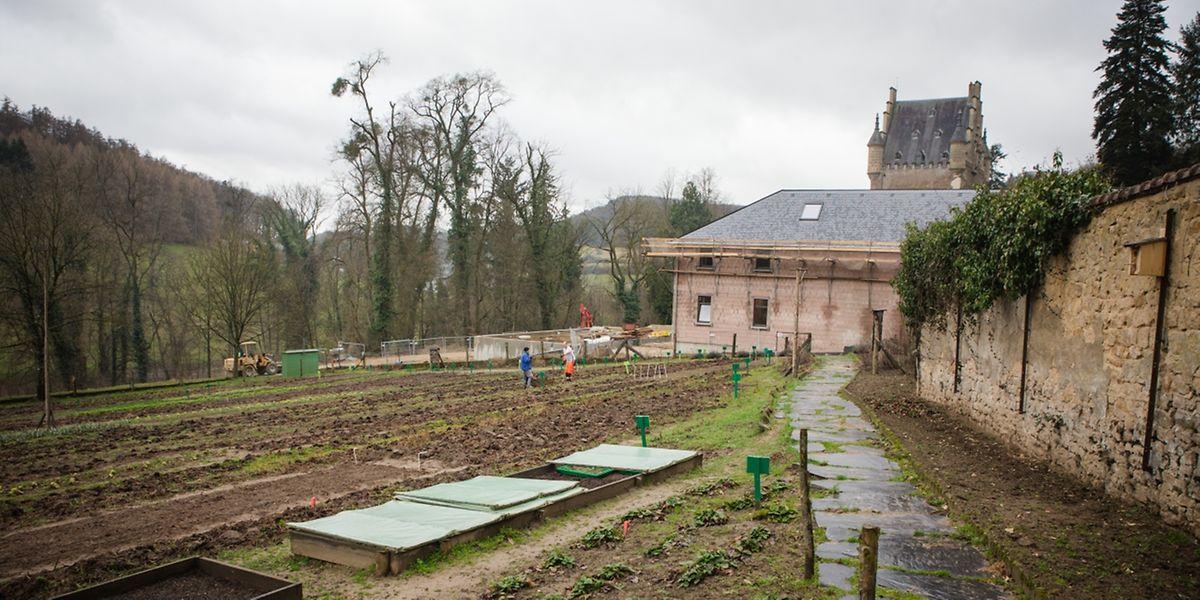 Im Garten des Nachsorgezentrums soll künftig während des ganzen Jahres Gemüse gezüchtet werden. Möglich wird dies durch den Bau eines Gewächshauses sowie eines neuen Ateliers .