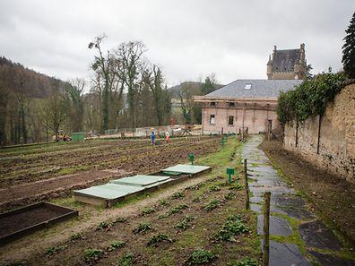 Centre post-thérapeutique - Stëmm vun der Strooss - Photo : Pierre Matgé
