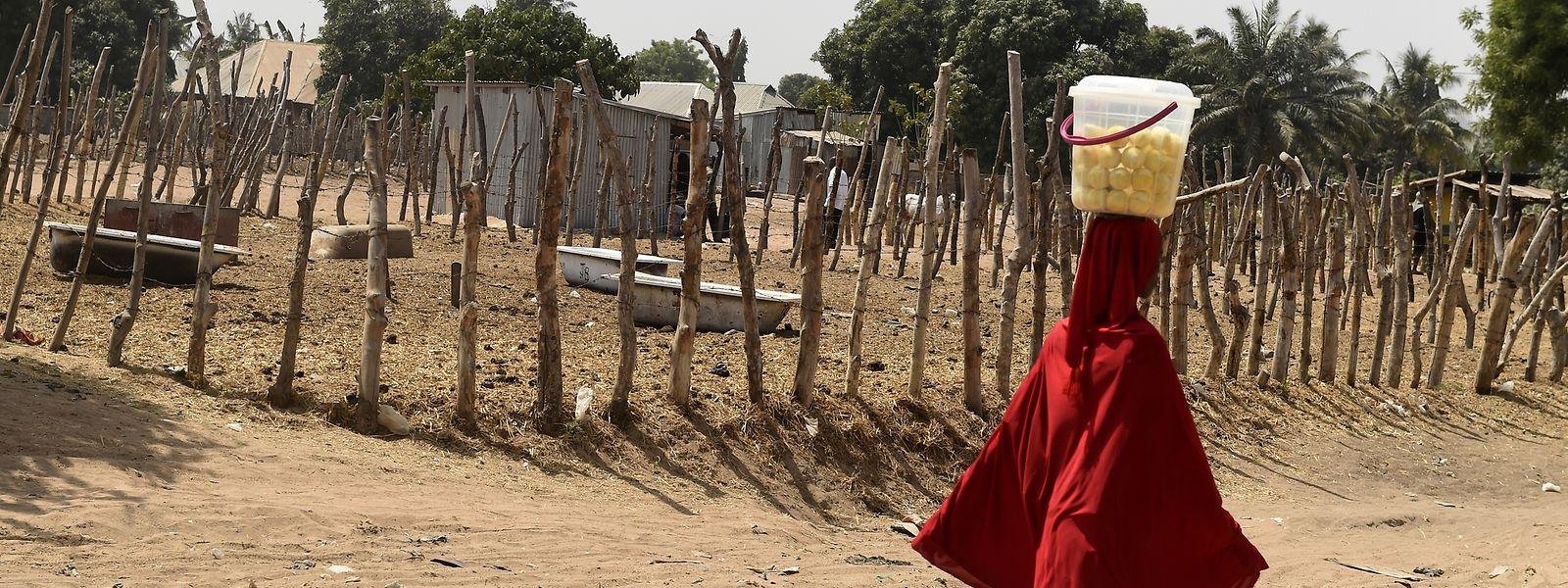 Nigeria wird seit Jahren vom Terror der Dschihadistenmiliz Boko Haram erschüttert.