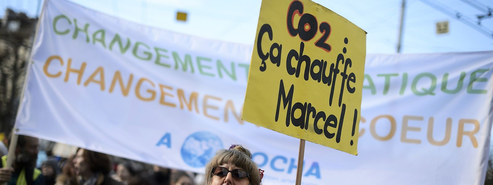 Manifestants à Genève, le samedi 28 novembre 2015
