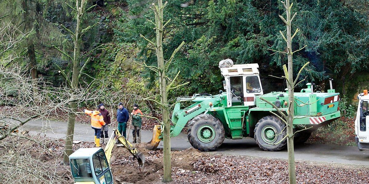Am Montag haben die Vorbereitungsarbeiten für den Bau einer provisorischen Brücke begonnen.
