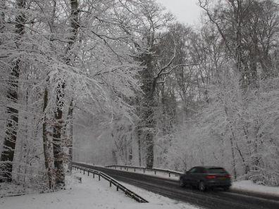 Schnee entlang der Landstraße: Autofahrern im Norden könnte sich am Montagmorgen dieser Anblick bieten.