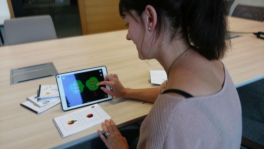 Véronique Cornu shows an example of an exercise via the tool