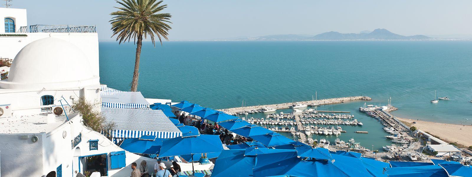 Vue panoramique sur la mer depuis le village en bleu et blanc de Sidi Bou Saïd.