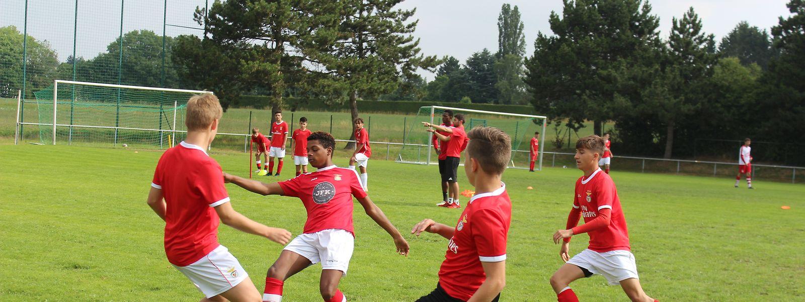 Os jogadores têm mostrado sempre grande aplicação nos exercícios.