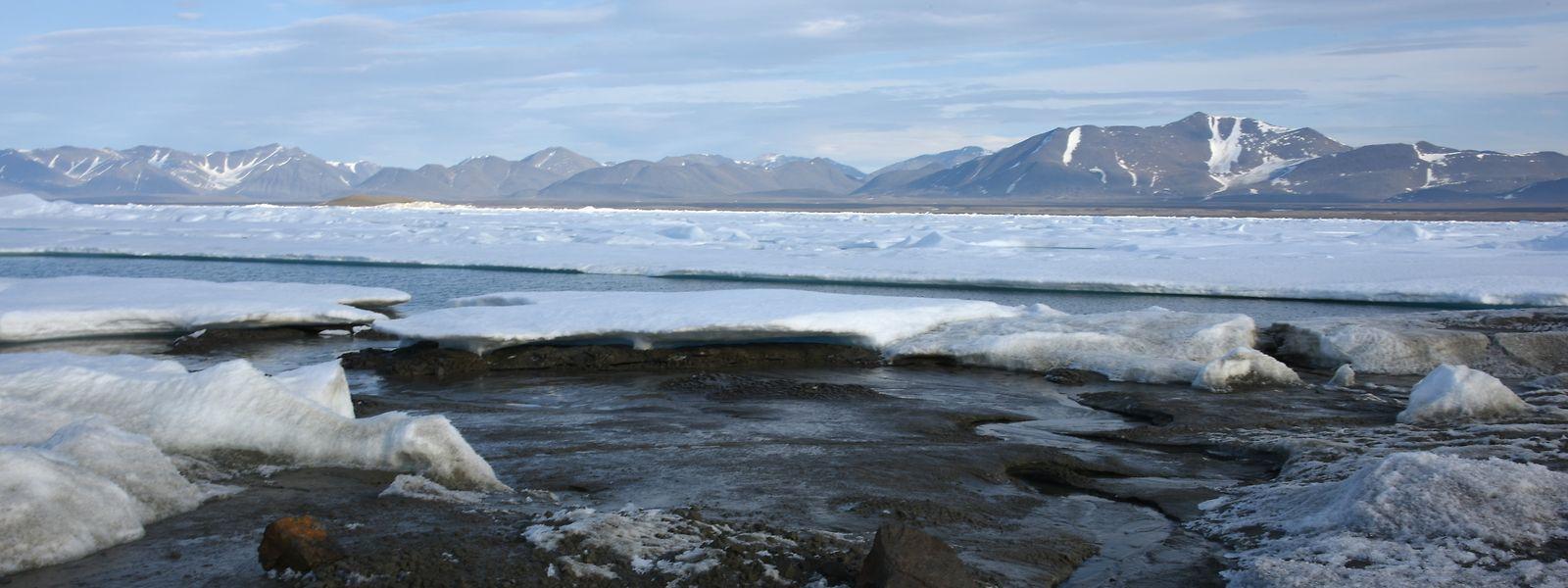 Das kleine noch unbenannte Eiland am nördlichsten Zipfel Grönlands ist möglicherweise die wohl nördlichste Insel der Welt.