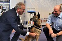 Auch tierische Mitarbeiter müssen belohnt werden. Als Geldhund Cash 2018 in Rente geht, wird er von Finanzminister Pierre Gramegna (l.) und Zolldirektor Alain Bellot verabschiedet. Bereits 2017 hat ihm der Minister als Dank für den Fund einen Knochen überreicht.