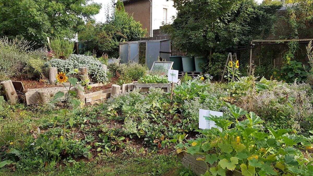 Der Viertelgarten am Breedewee.