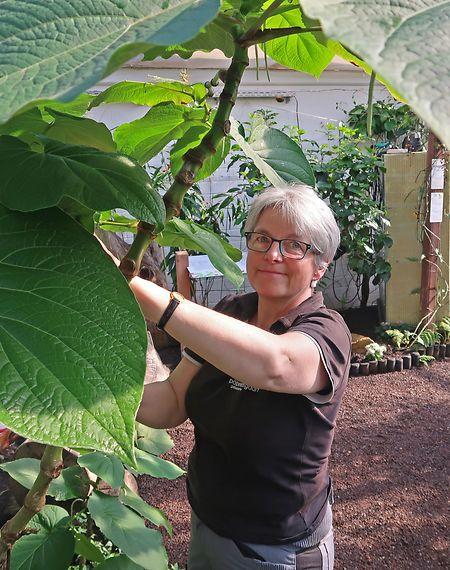 Biologin Lydia Reuter arbeitet seit dem ersten Tag im Schmetterlingsgarten.