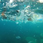 Os oceanos cada vez mais poluídos com plásticos e fármacos