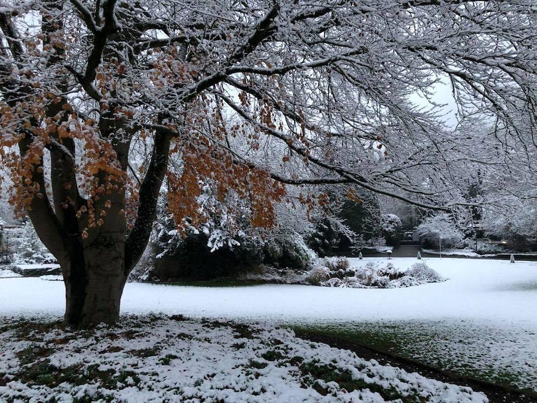Le Luxembourg s'est réveillé sous la neige ce vendredi matin.