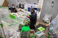 Die PMG-Fraktionen (Plastik, Metall, Getränkekartons) werden im Drive-In Recycling von Hand sortiert und müssen später maschinell nachsortiert werden.