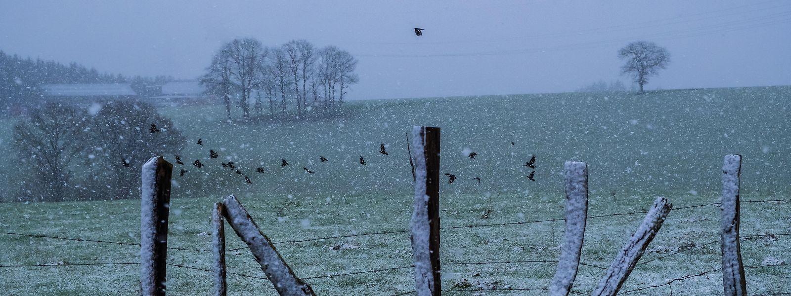 Grün-weiße Weihnachten: In Rullingen bei Wiltz fiel bereits am Donnerstag etwas Schnee.