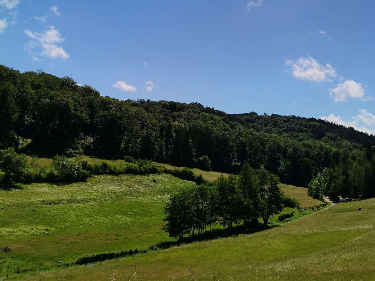 In Luxemburg kann man jedes Wochenende wandern - ohne dabei zweimal über den gleichen Pfad zu gehen.