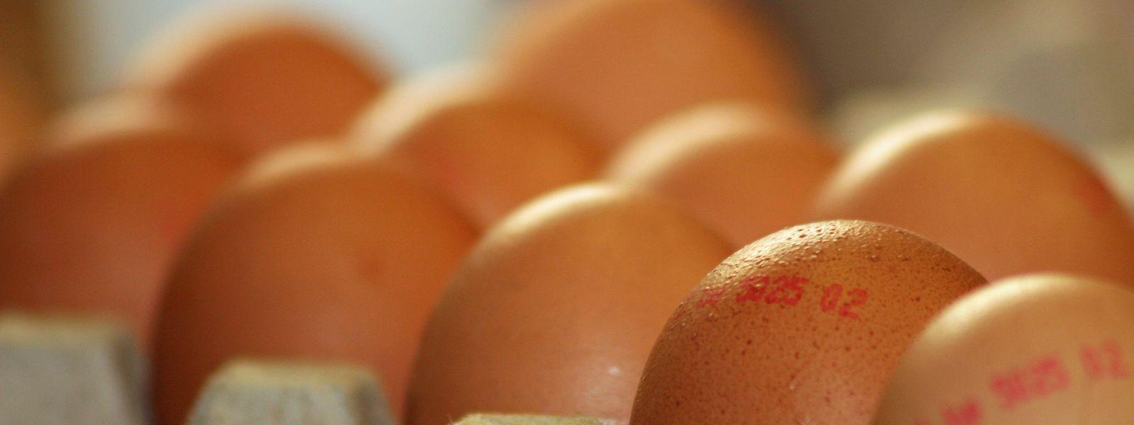 Millionen niederländischer Eier sind mit Fipronil belastet.