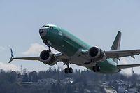 Eine Boeing 737 Max 8 hebt am 22. März am Renton Municipal Airport im US-Bundesstaat Washington ab. Eine Maschine desselben Typs musste am Dienstag in Florida notlanden.