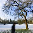 09.02.13 neige winter schnee hiver, paysage hivernal winterlandschaft, luxemburg, photo. Marc Wilwert