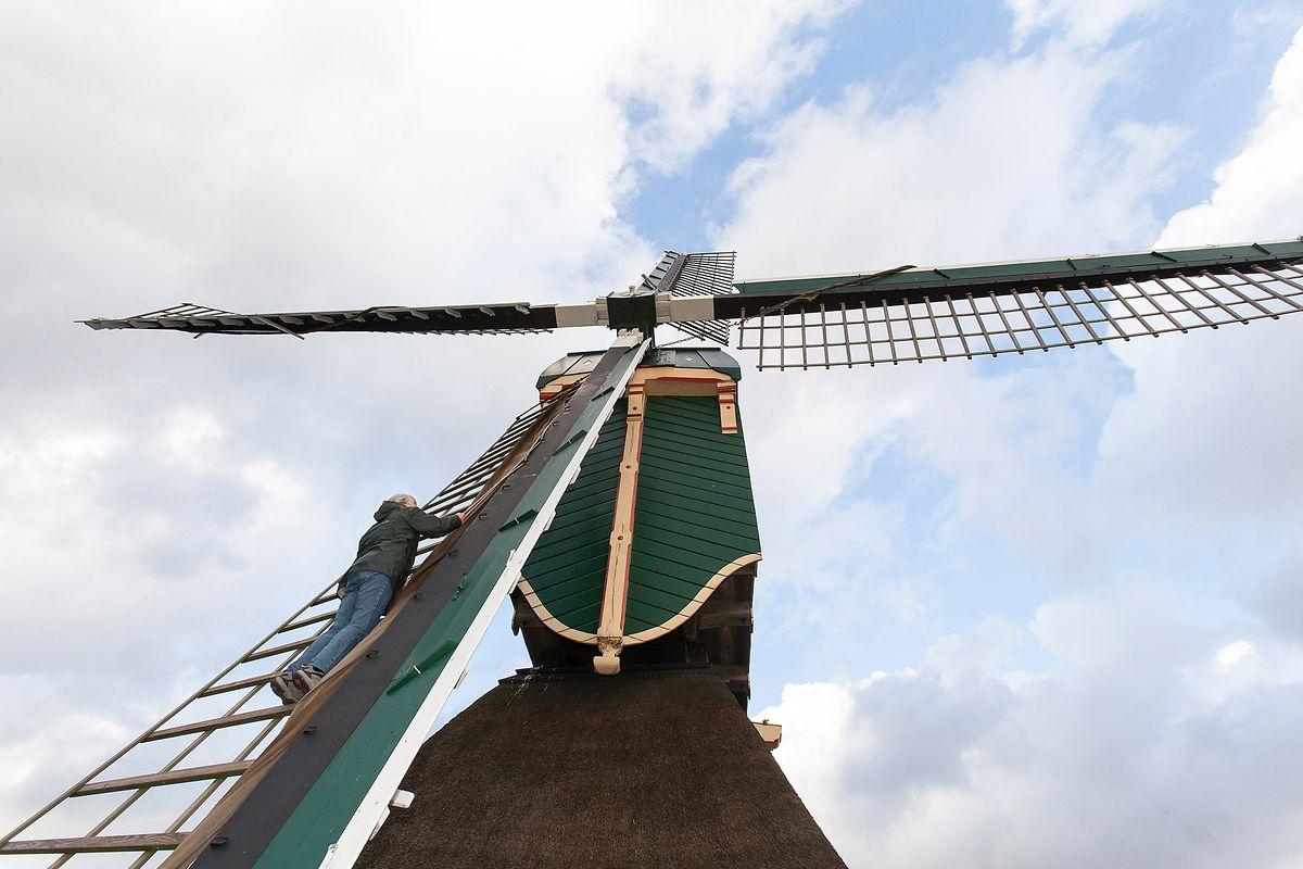 Wind- und Wassermüllerhandwerk, Niederlande.