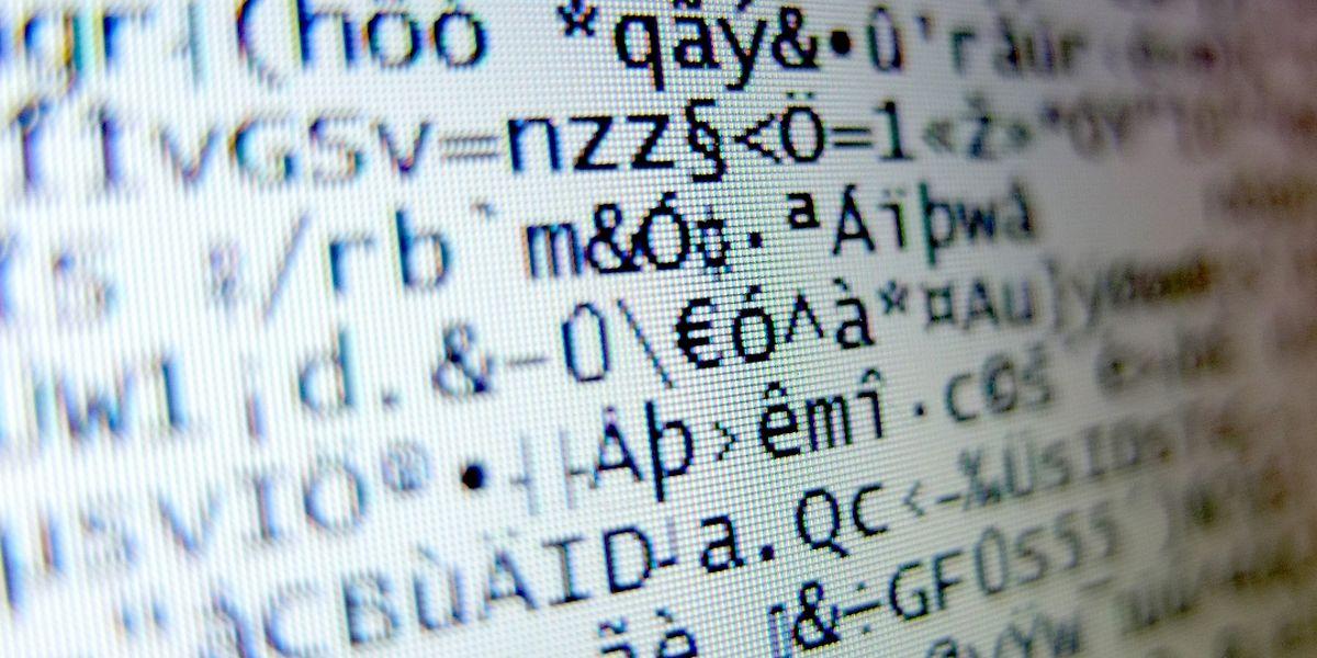Als Zahlen- und Buchstabensalat bezeichnete der Präsident des Geheimdienstausschusses, François Bausch, den Inhalt der Daten-CD.