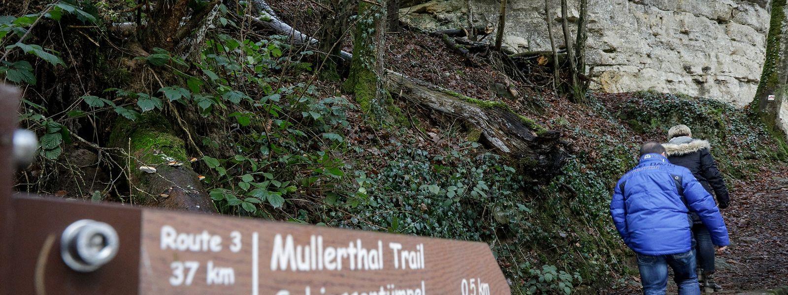 La Mullerthal n'est plus la seule région touristique intéressée par la nouvelle plate-forme qui doit voir le jour en novembre