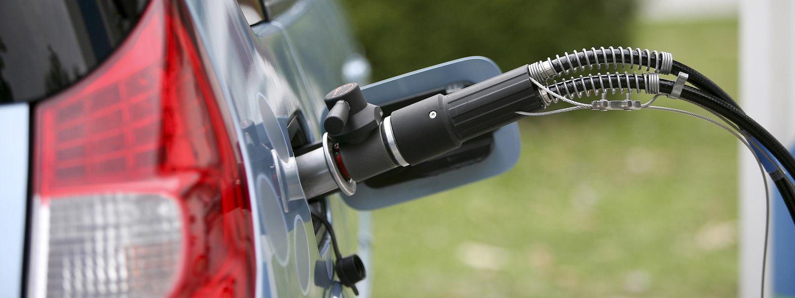 En 2018, 1085 voitures hybrides ont été immatriculées pour des particuliers. Un nombre qui pourrait bien doubler cette année.