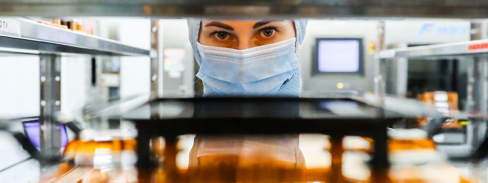 Nur wenige Hersteller weltweit können Mikrochips produzieren.