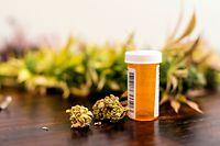 Ärzte dürfen in Luxemburg bestimmten Patienten unter anderem Cannabisblüten verschreiben. Diese entfalten etwa beim Rauchen ihre Wirkung.