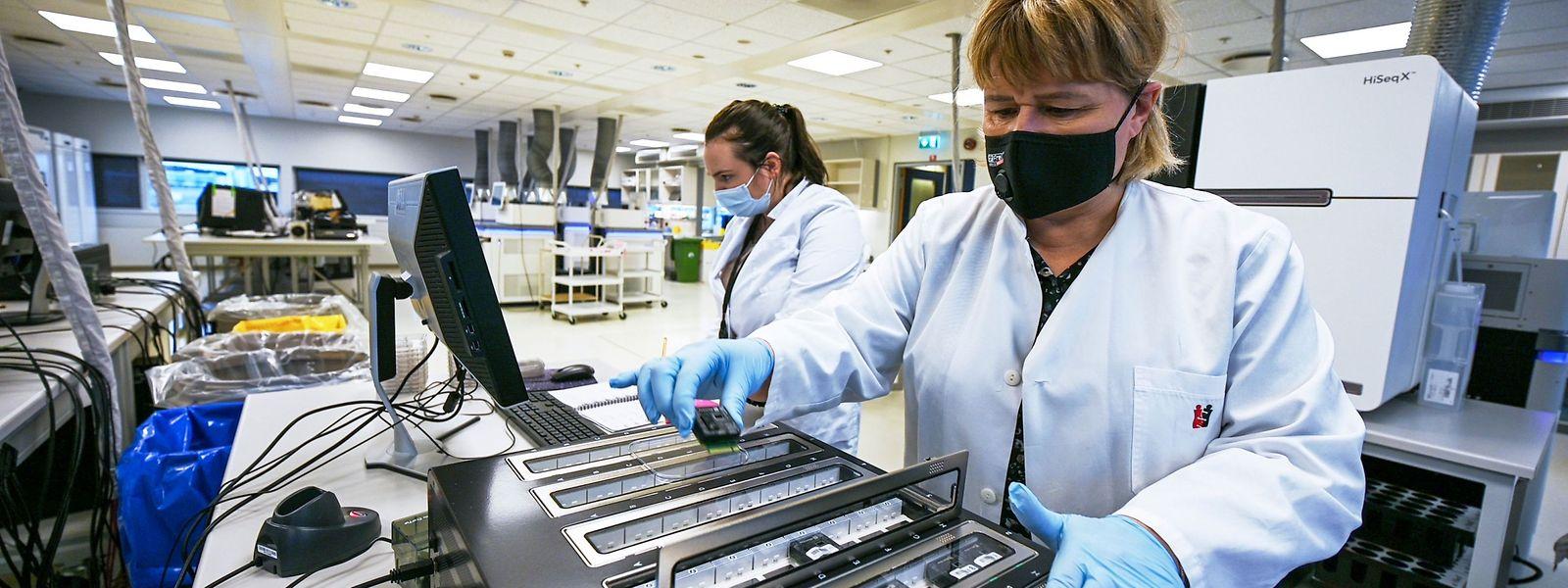 Une prochaine amélioration permettra au LNS de doubler sa capacité de séquençage d'échantillons.