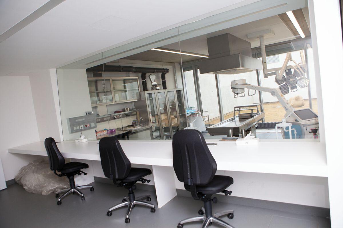 Untersuchungsrichter, Staatsanwälte und Kriminalermittler können die Obduktion aus einem getrennten Raum beobachten.