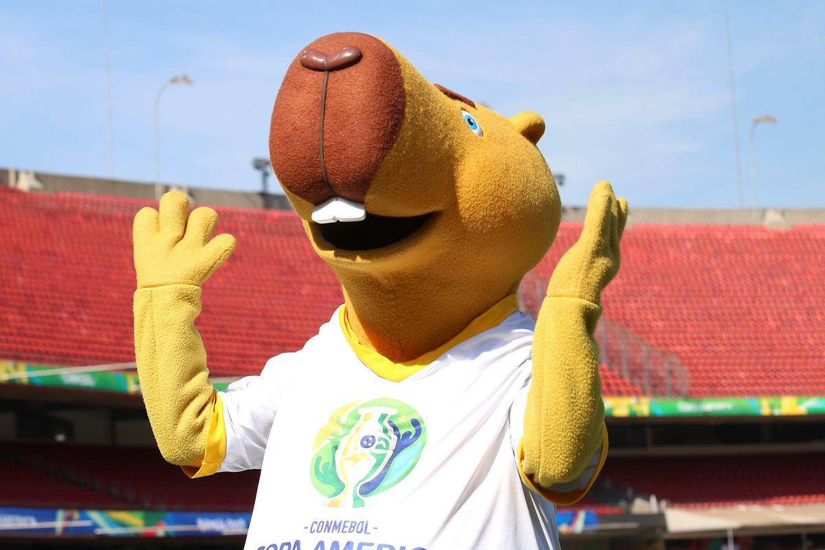 Zizito, la mascotte de cette Copa America 2019.