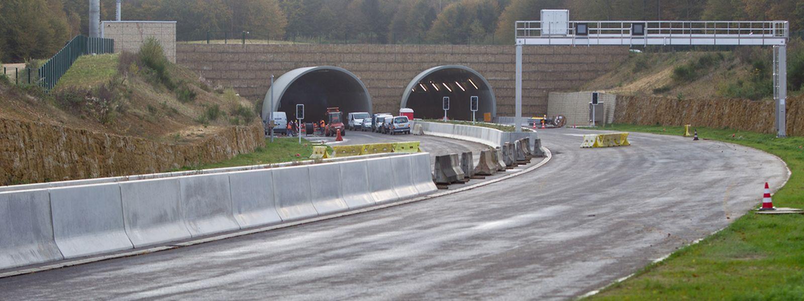 Bei großen Bauvorhaben wie etwa der Nordstraße müssen die Schäden an der Natur kompensiert werden.