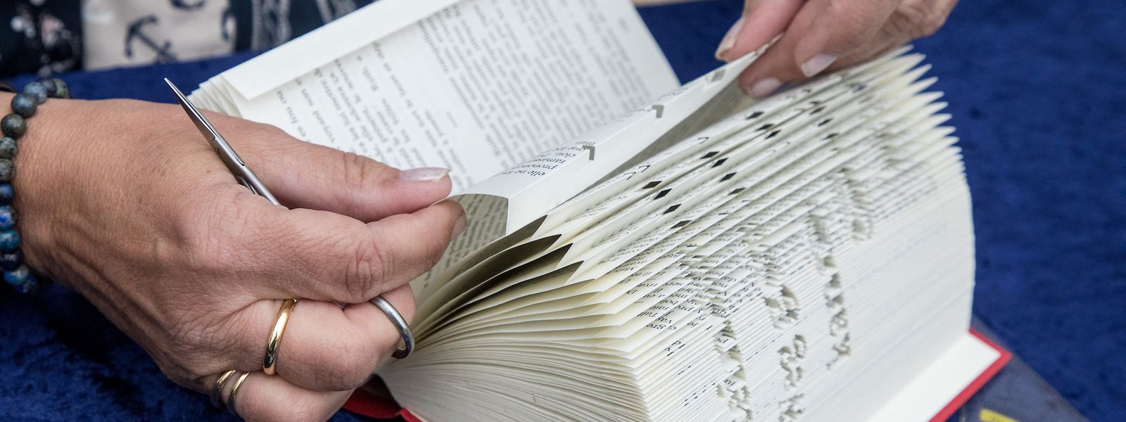 Eliane Lothritz hat ein ungewöhnliches Hobby: Sie faltet Motive in Bücher