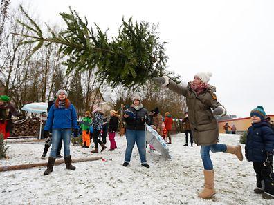 Luxemburger Weihnachtsbaum-Weitwurf, Mersch, le 07 Janvier 2017. Photo: Chris Karaba