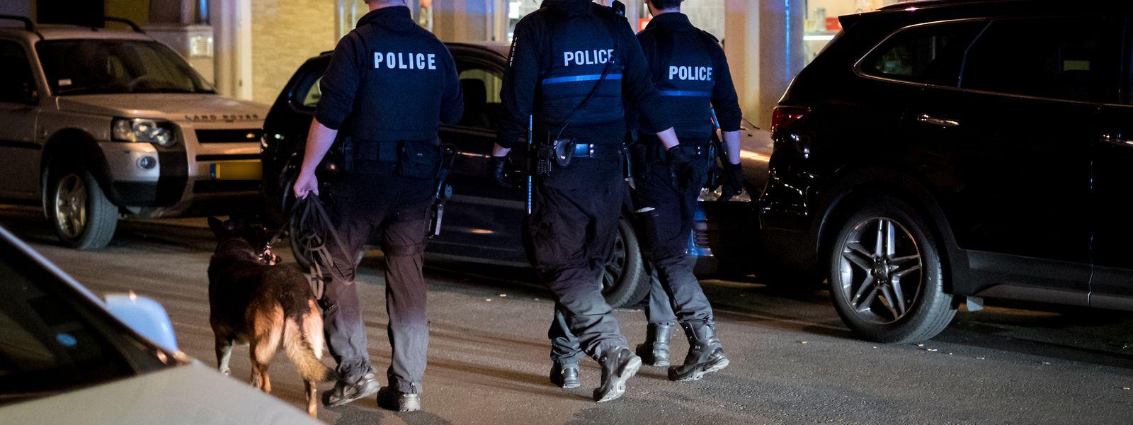 Polizeitaktik im Kampf gegen den Drogenhandel: Straßenabschnitte werden abgesperrt und dann mit Drogenspürhunden abgeschritten. Wer flüchtet, wird kontrolliert.