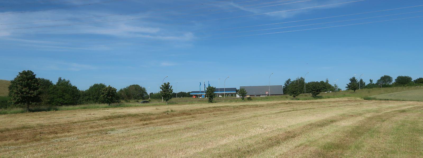 Direkt am Kreisverkehr gegenüber der Tankstelle auf Fridhaff haben die Gemeinde Diekirch zwei und der Staat fünf Hektar Land erworben. Der Preis lag jeweils bei 2.500 Euro pro Ar.