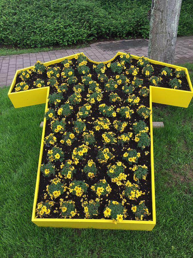"""Wer am 4. Juli das """"Maillot jaune"""" tragen wird, ist noch offen. Bis dahin haben die Blumen noch Zeit zum Wachsen."""