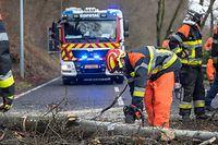 Sturm Sabine-Chiara / CR101 / Kopstal - Mamer / Baum / CGDIS / CIS KOPSTAL / LF / Feuerwehr /  Photo: Laurent Blum