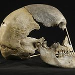 Genoma europeu mais antigo revela cruzamento sexual com Neandertais