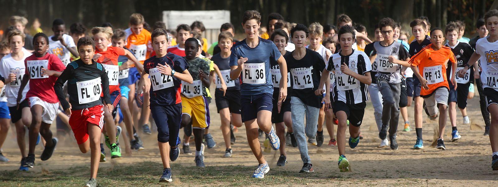 Bei bestem Wetter kämpften die Schüler in sieben Kategorien um Platz eins.