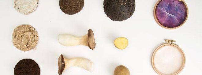 Jungdesignerin Lynn Harles arbeitet mit natürlichen Materialien, wie Pilz-Myzelen, Kaffeesatz oder Sägespänen, die sie als Abfall-Produkte von regionalen Schreinereien bezieht.