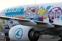 Lokales, Luxair, Luxairport, Flieger, Künstler Sumo  Foto: Anouk Antony/Luxemburger Wort
