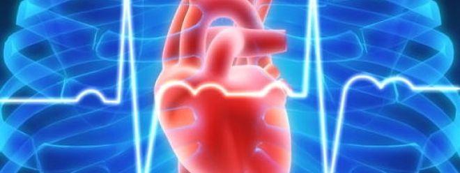 Wird die Herzschwäche rechtzeitig erkannt, kann man das sehr gut behandeln.